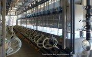 Создание козефермы. Производство сыров из козьего молока.