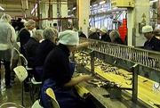 Требуются рыбообрыботчицы в Латвию