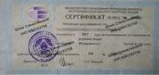 Репетитор по русскому языку (магистр филологических наук)