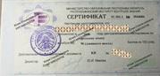 Репетитор (русский язык)
